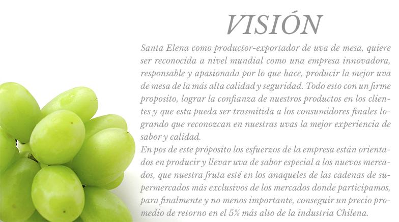 vision_esp